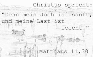 Matthäus 11,30