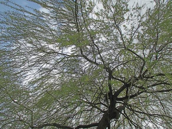 christenfindenruhe.com Bild 22