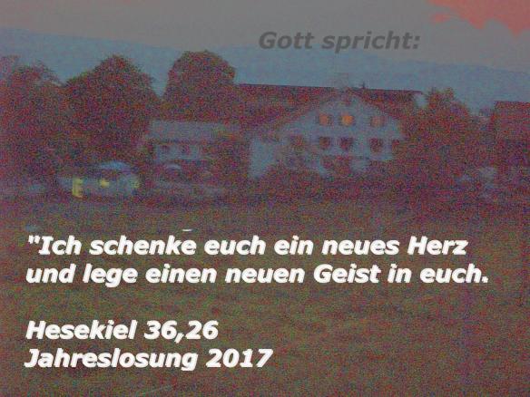 Jahreslosung 2017