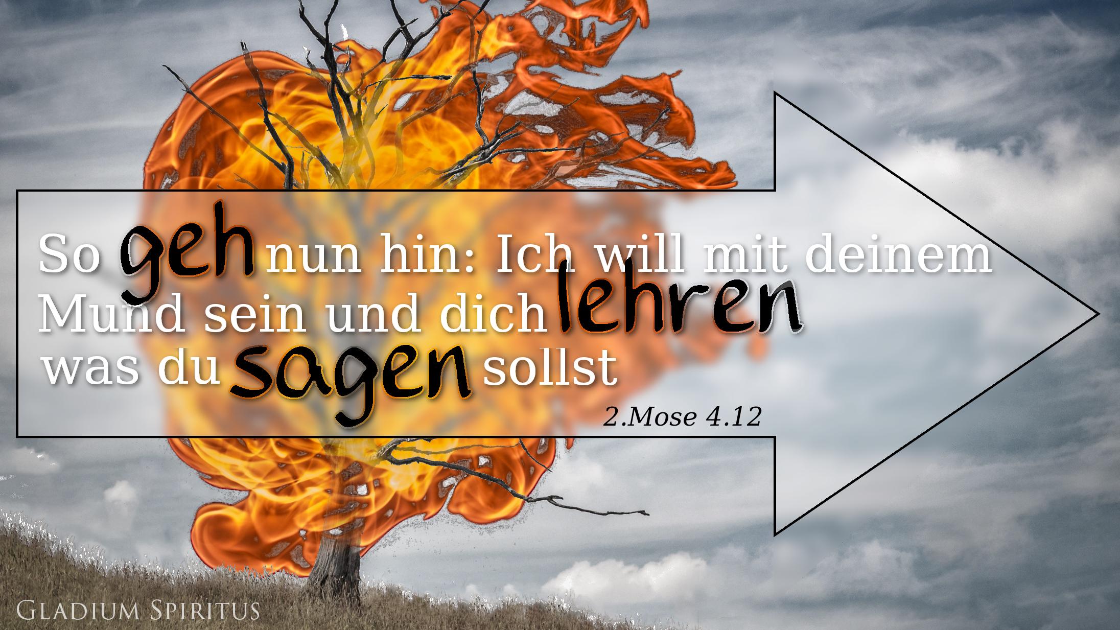 Bibelvers Wallpaper: 2.Mose 4,12