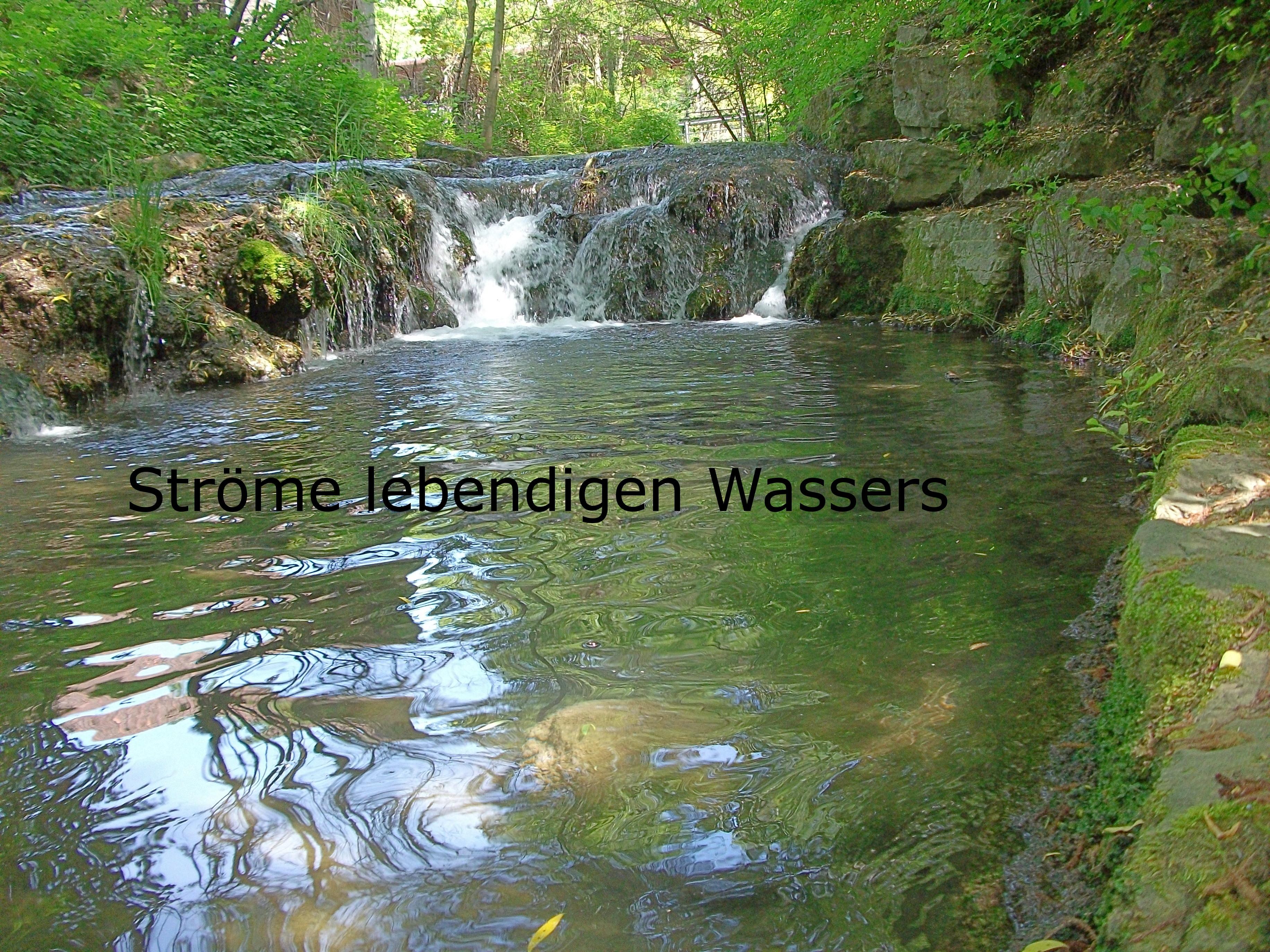 dscf1436hellert - 'Lebenidges Wasser' in Strömen
