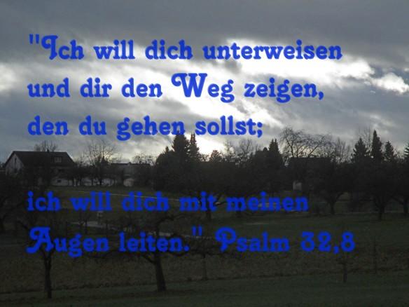 IMG_3556hellerT